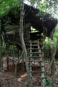 Jungle-Tree-House