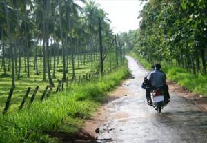 srilanka460