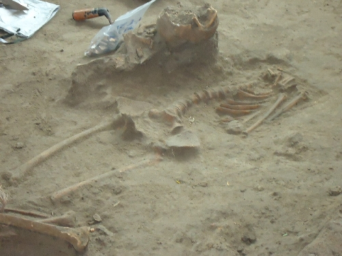 இலங்கையின் வன்னிப் பகுதியில் ஒரே இடத்தில் 9 மனித எலும்புக் கூடுகள் கண்டெடுப்பு
