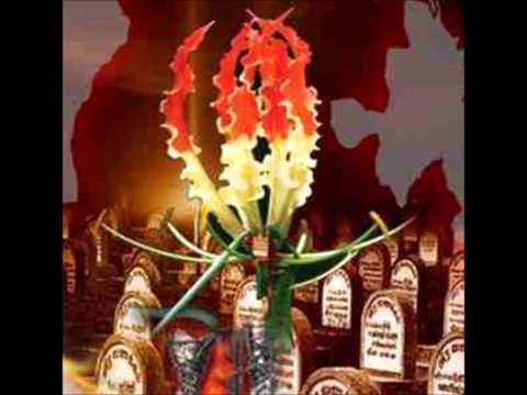 நினைவு கூருவதை சிறிலங்கா அரசாங்கம் தடுக்கக் கூடாது | தமிழ் அரசியல் தலைவர்கள் கோரிக்கை