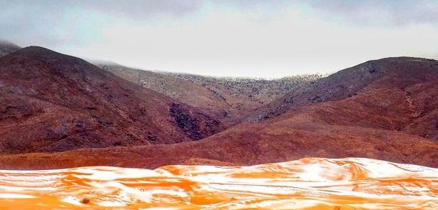 சகாரா பாலைவனத்தில் மீண்டும் பசுமையான சூழல் வருவதற்கான வாய்ப்புகள்
