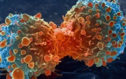 புற்றுநோய் | எதனால் உண்டாகிறது? எவ்வாறு தவிர்ப்பது?