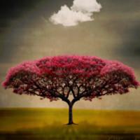 ஆத்மாவின் ஒப்பாரி | கவிதை | இரா.சி. சுந்தரமயில்