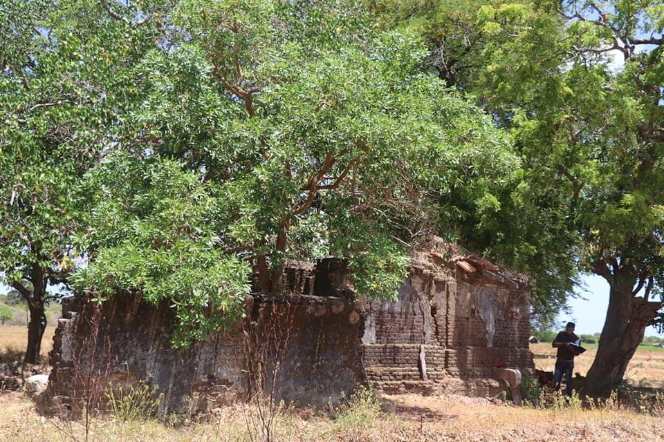 மன்னாரில் 13 ஆம் நூற்றாண்டுக்குரிய விநாயகர் சிலை!