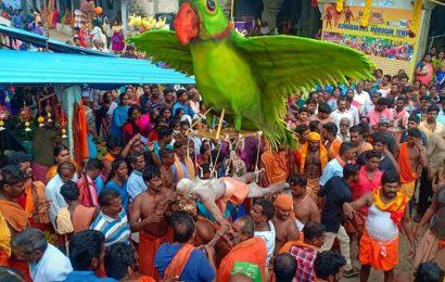 வள்ளியை மணம் புரிந்த வேளிமலை குமாரகோவில்.