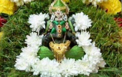 அருகம்புல் மகிமை – விநாயக சதுர்த்தி ஸ்பெஷல்!
