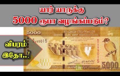 அரசின் விசேட கொடுப்பனவு – 5000 ரூபா பெற தகுதியானவர்கள்விபரம்!